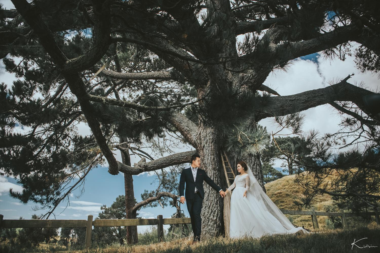紐西蘭婚紗攝影